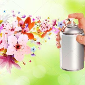Spray per Ambienti e Insetticidi